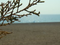 Am Strand in Kalathos